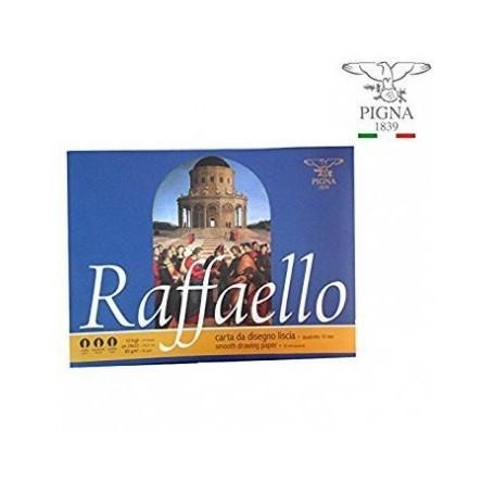 ALBUM RAFFAELLO 10 FF. 24X33 10 MM